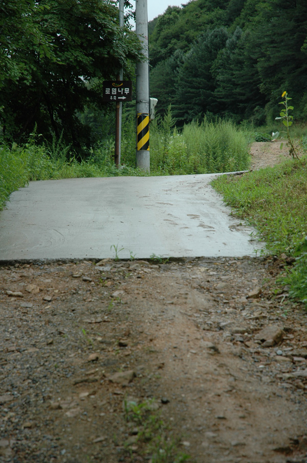 road_2.jpg