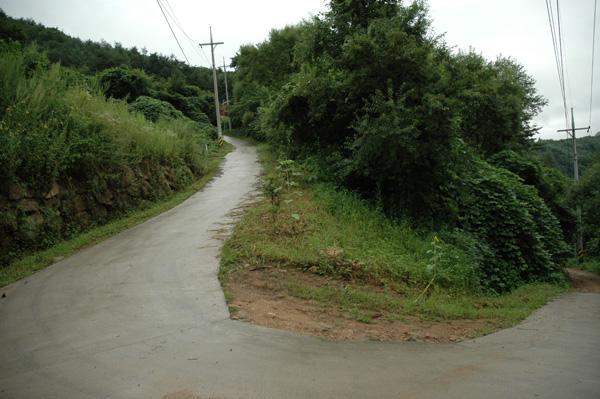 road_3.jpg